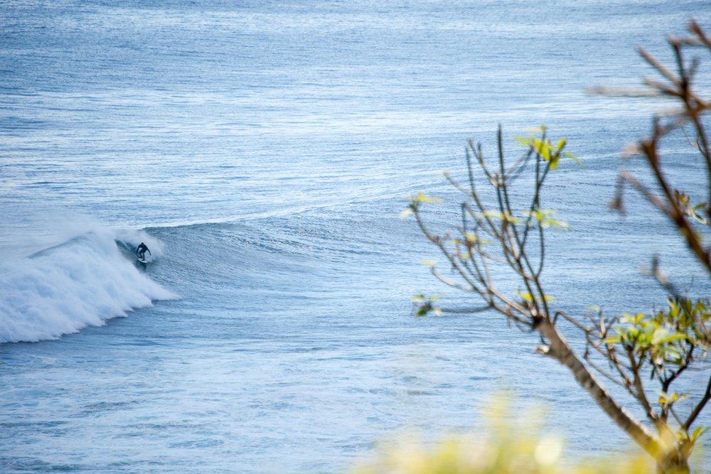 11.-Surfing-(1)