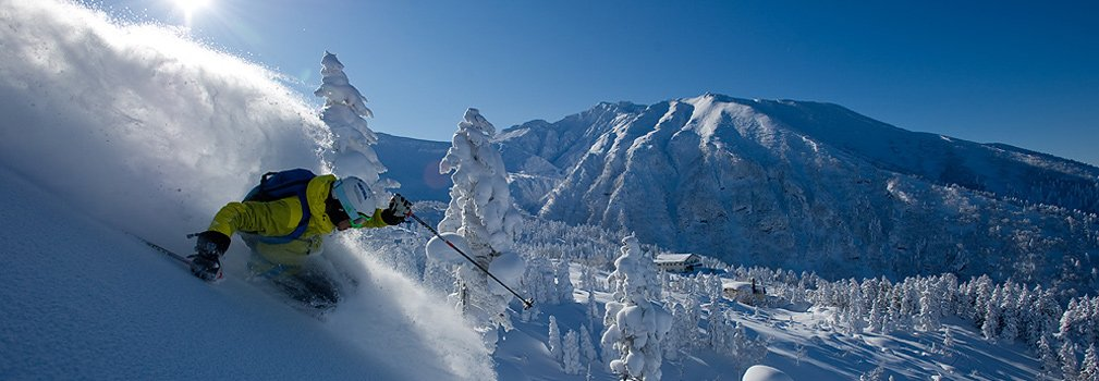 Skiing deep powder snow in Japan