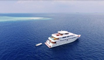 Blue Horizon 3 Surf Charter